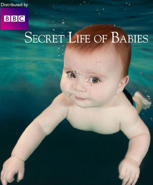 secret life0of babies afisha